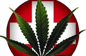 marijuana-doctors